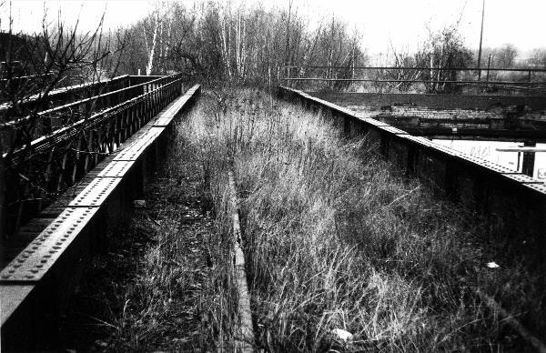 Zugewucherte Gleise