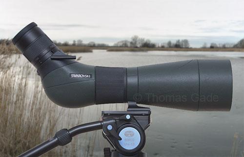Spektiv statt teleobjektiv u2013 digiscoping mit swarovski optik